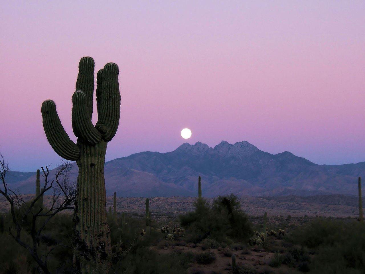 The Full Moon rises in the desert