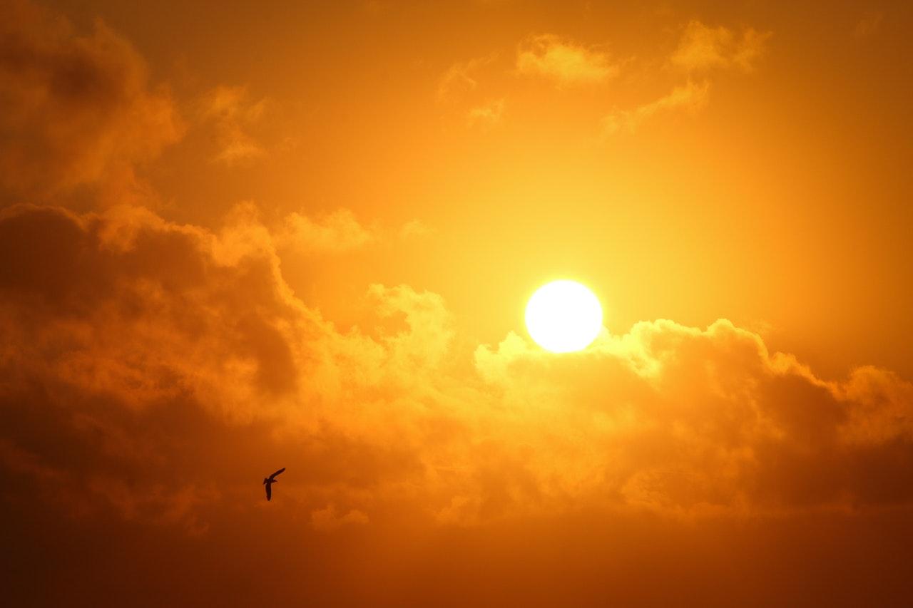 Sun size
